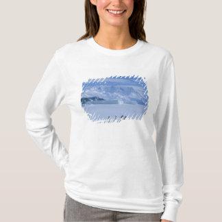 T-shirt Adeliae de pingouins, de Pygoscelis d'Adelie),