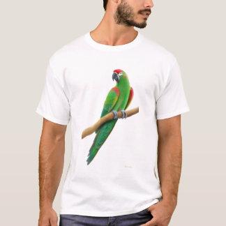 T-shirt affronté rouge mis en danger de perroquet