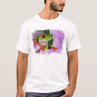 T-shirt Agalychnis callidryas.