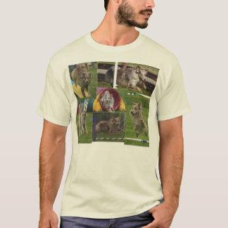 T-shirt Agilité australienne de berger