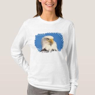 T-shirt aigle chauve, leuccocephalus de Haliaeetus, 2