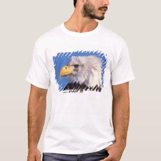 T-shirt aigle chauve, leucocephalus de Haliaeetus, fin, 2