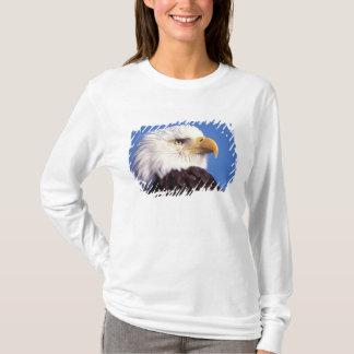 T-shirt aigle chauve, leucocephalus de Haliaeetus, fin, 3