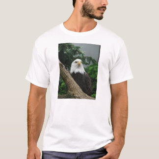 T-shirt aigle chauve magestic se reposant dans l'arbre