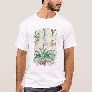 T-shirt Ail et d'autres plantes