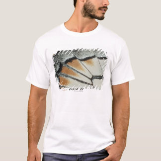 T-shirt Aile de papillon