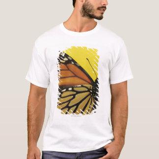 T-shirt Aile d'un papillon