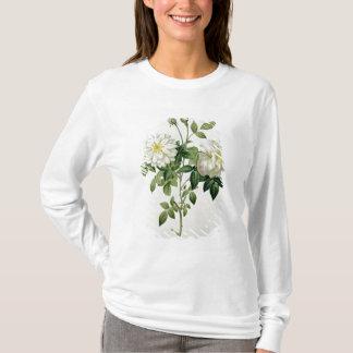 T-shirt Aime Vibere gravé par Eustache Hyacinthe