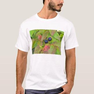 T-shirt Airelles mûres dans le ressortissant à tête plate