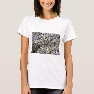 T-shirt Algue