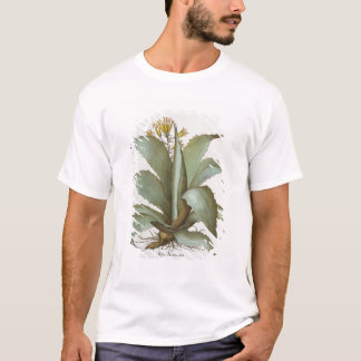 T-shirt Aloès américain : Aloès americana, du 'Hortus Ey