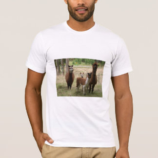 T-shirt Alpaga mignons de Brown dans le zoo