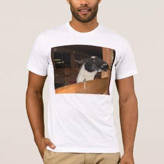 T-shirt Alpaga pas un lama