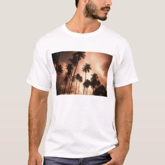 T-shirt Ambre gris Caye, Belize, Amérique Centrale. 2