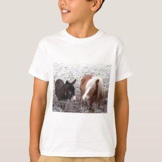 T-shirt Amis givrés