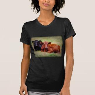 T-shirt Amour d'Angus - paire de bétail côte à côte