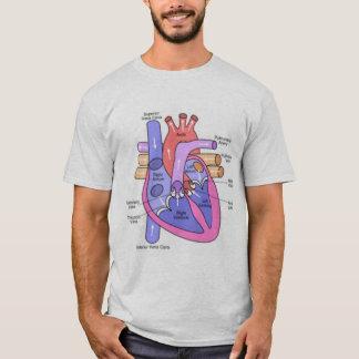 T-shirt Anatomie d'un coeur isolé