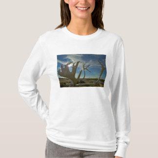 T-shirt Andouillers de caribou au sol arénacé dans