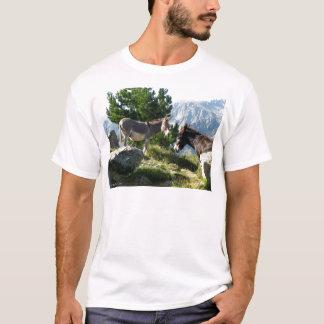 T-shirt Ane de Corse