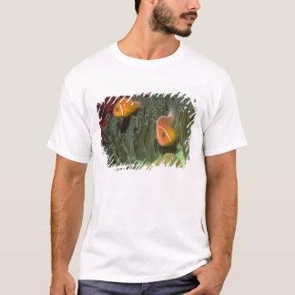 T-shirt Anemonefish rose dans l'actinie de Magnificant