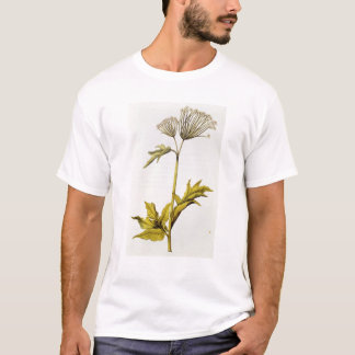 "T-shirt Angélique officinale, de ""La Guirlande de Julie"","