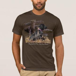 T-shirt anglais de cocker