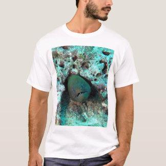 T-shirt Anguille de Moray aux Fidji