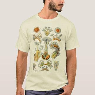 T-shirt Animaux de mousse