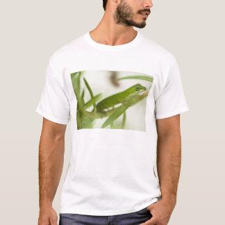 T-shirt Anole vert masculin, carolinensis d'Anolis, dans a