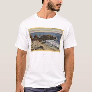 T-shirt Antenne de la côte rocheuse