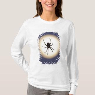 T-shirt Araignée de globe sur le Web avec la pleine lune,