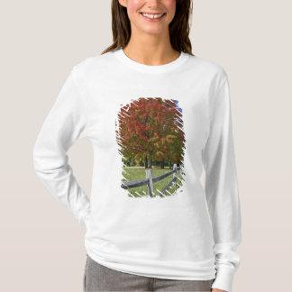 T-shirt Arbre d'érable rouge dans des couleurs d'automne,