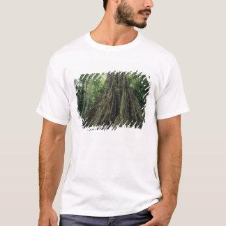 T-shirt Arbre étayé dans la forêt tropicale, Corcovado