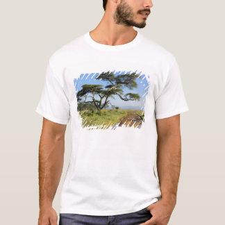 T-shirt Arbre primitif de chemin de terre et d'acacia, lac