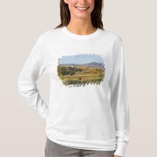 T-shirt Arbres d'automne, Khancoban, montagnes de Milou,