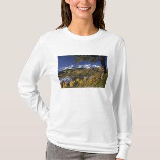 T-shirt Arbres de montagnes et d'Aspen de San Juan dans le