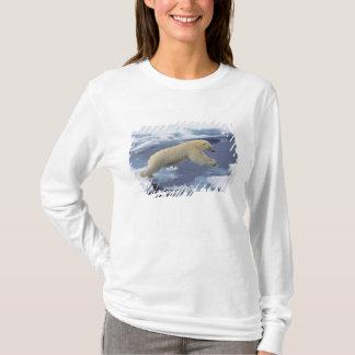 T-shirt Arctique, le Svalbard, ours blanc se prolongeant