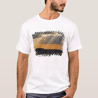 T-shirt Arrangement de Sun sur le masai Mara