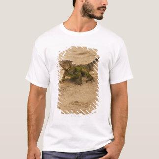 T-shirt Aruba, lézard sur le sable