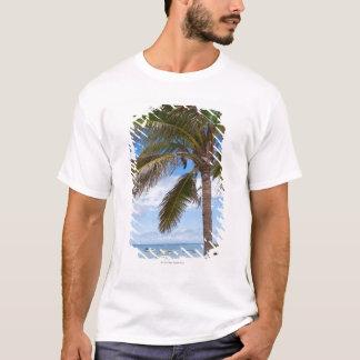 T-shirt Aruba, palmier sur la plage