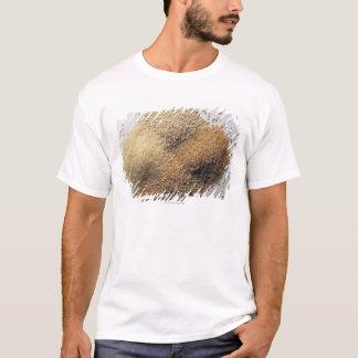 T-shirt Assortiment des grains