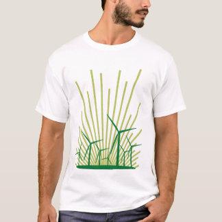 T-shirt aube : rayon de lumière