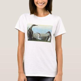 T-shirt Audubon : Dingue arctique