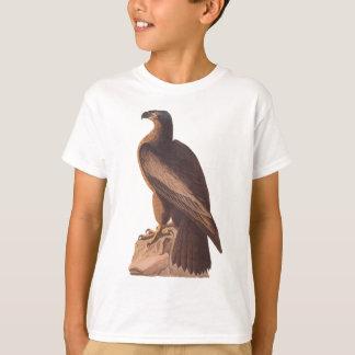 T-shirt Audubon jeune Eagle chauve