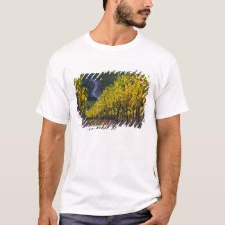 T-shirt Australie du sud, collines d'Adelaïde, Summertown.