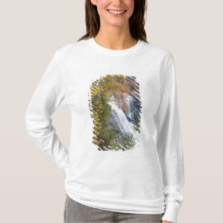 T-shirt Automnes chauves de rivière
