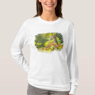 T-shirt Baies de jaseur et de poussée de cèdre sur un