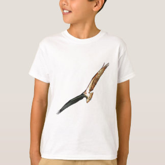 T-shirt Balbuzard