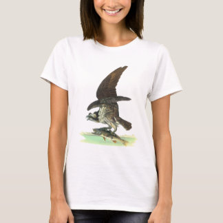 T-shirt Balbuzard par John James Audubon