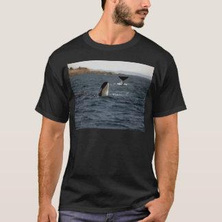 T-shirt Baleines de San Juan